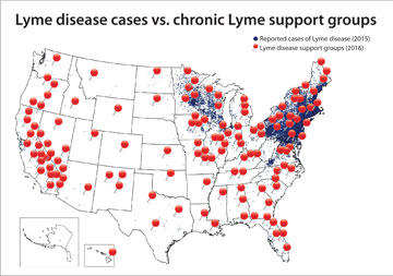 No Autism Is Not Caused By Lyme Disease >> Confronting The Misnomer Of Chronic Lyme Disease